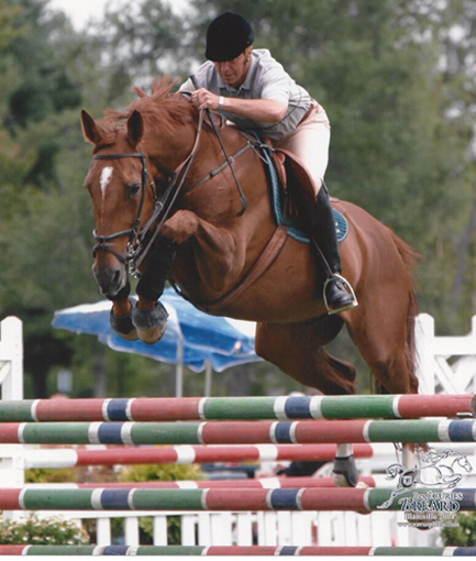 Stables_Services_Dieter_Coaching